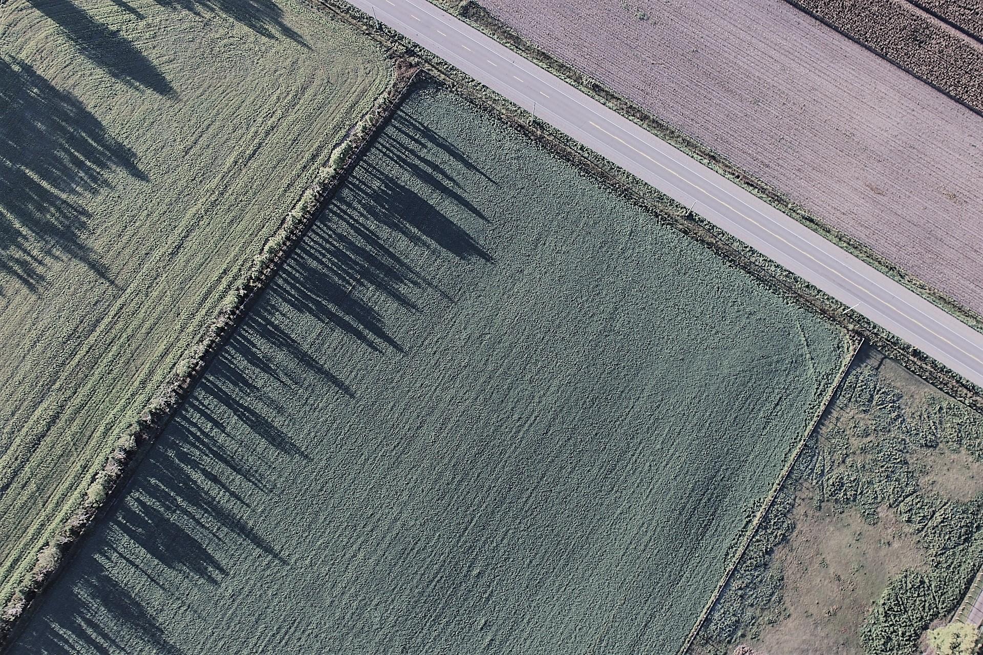Купля-продажа земельного пая